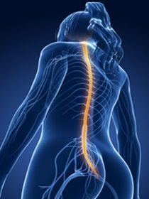 Daño neuropatico